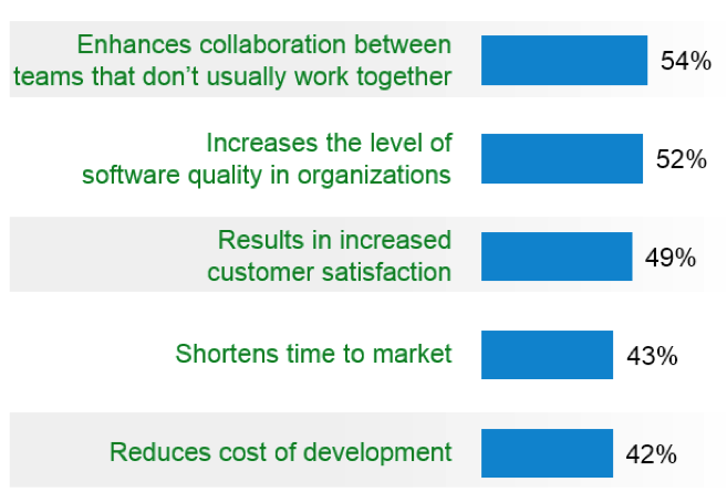 Beliefs given regarding agile adoption and its results.
