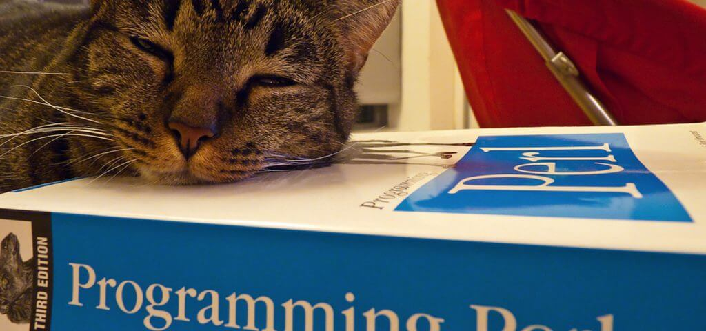 5 programming languages that are fading fast